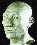 Kennewick Man - clay reconstruction