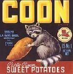 """coon"""